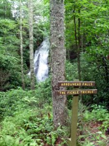Fickle Trickle Falls